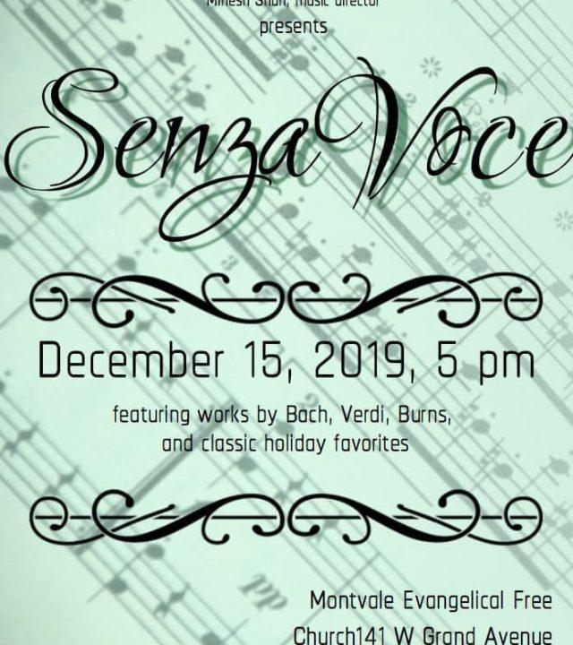 Senza Voce Concert Poster